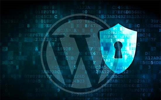 3 Reasons Why We Use WordPress for Web Development